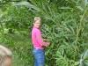 Pflege der Weidenhäuser 2